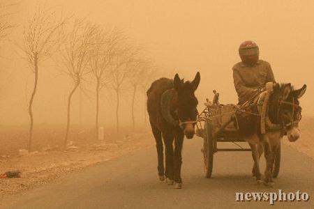 组图:甘肃遭遇2006年最强沙尘暴能见度10米