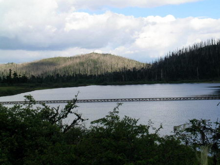 图文:布景中的木栈桥和木桩遗留在碧诂天池中