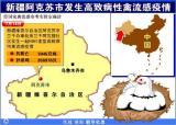 图文:新疆阿克苏市发生高致病性禽流感疫情