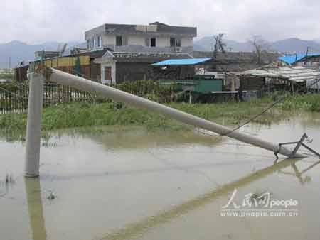 桑美/11日中午,齐腰粗的电线杆被狂风拦腰截断,这样的景象在浙江...
