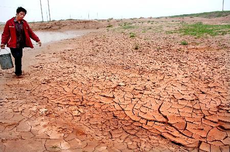 图文:宁夏中部干旱带遭受严重旱灾