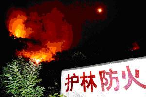 组图:200官兵阻击明月沱大火
