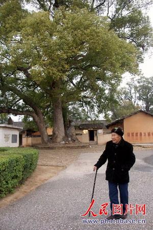 图文:在瑞金毛泽东旧居前散步的宋太针