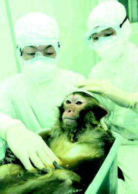 武汉大学有刚刚建成的大型p3级动物实验室