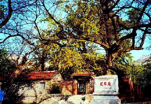 青岛长沙路周边是坟地