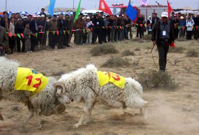跑步前热身运动图解_赛羊会前的热身