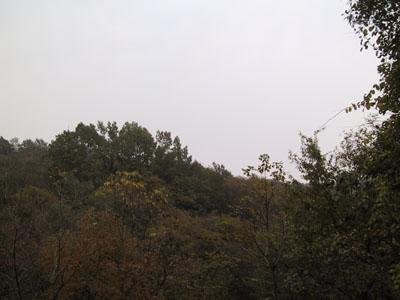 组图:八公山国家地质公园的石林