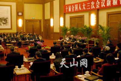 全国人大会议新疆代表团举行全体会议(图)