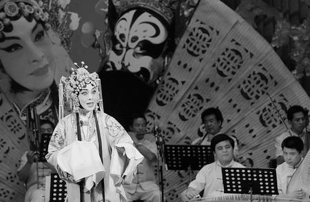 郑州举办纪念桑振君逝世一周年大型演唱会(图)