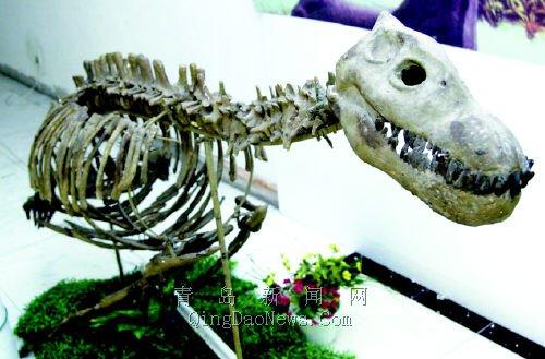 恐龙来了 记者昨日探营活体恐龙科普展