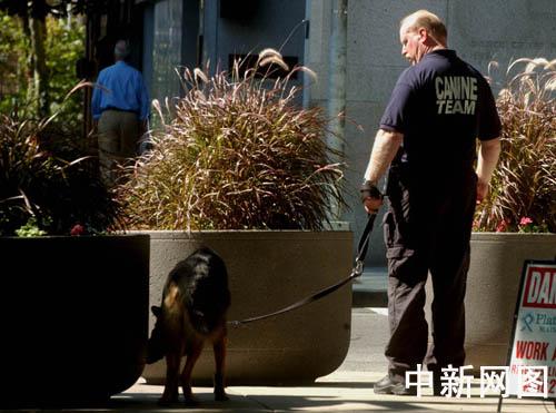 组图:纽约准备隆重纪念911事件4周年