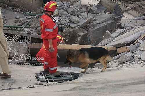图文:中国救援队开展救助工作