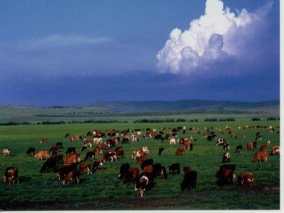 有160.2万人口,是一个以蒙古 阿尔山市和突泉县._ 乌兰浩特市