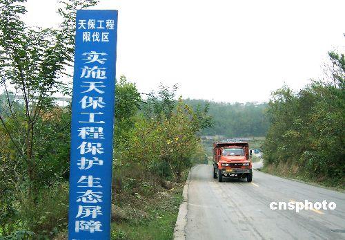 黑龙江国有森工林区可采资源过度采伐面临枯竭