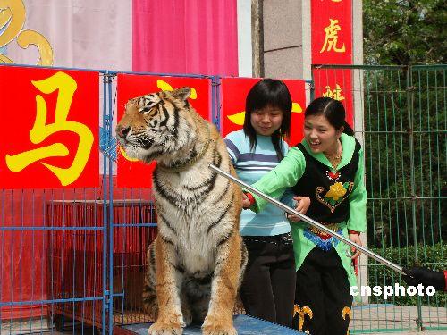 """图:河南公园上演""""动物秀"""""""
