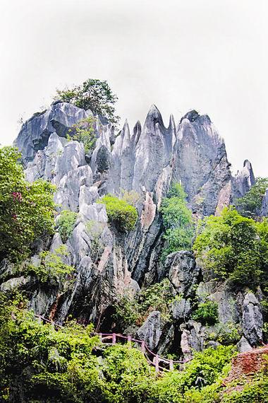 """广西贺州""""玉石林""""是我国独有的汉白玉地质公园,面积约25公顷."""