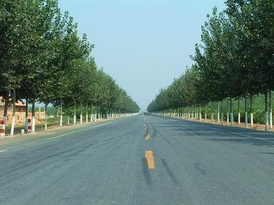 青县农村公路养护管理办法