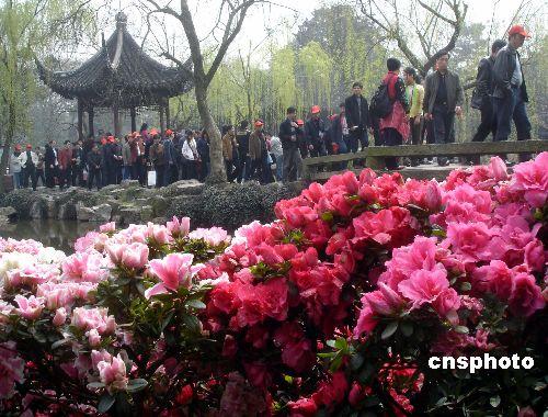 图:苏州拙政园杜鹃花旅游节开幕