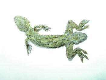 汽车 logo 动物
