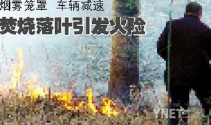 焚烧落叶引发火险(图)
