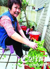 广州绝不放缓推行阶梯水价正在制定水价方案(图)