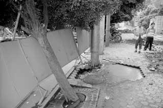 图片说明:人行道下陷,树枝倒在围栏上 摄影 姚远-泡垮人行道 7米路高清图片