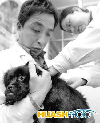 昨日上午,记者在沈阳小动物中心医院看到带着宠物来看病的主人已经