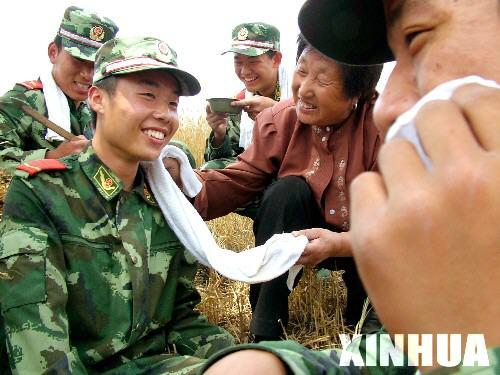 徐州:武警助农抢收小麦[组图](3)