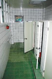 小学女生多次被男生拉进厕所玩性游戏(图)