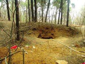 面对这个古墓,他们却不能投入抢救性发掘图片