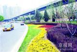 四惠桥桥区绿化景观改造工程