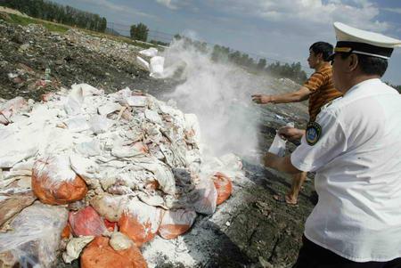 图文:销毁变质猪肉