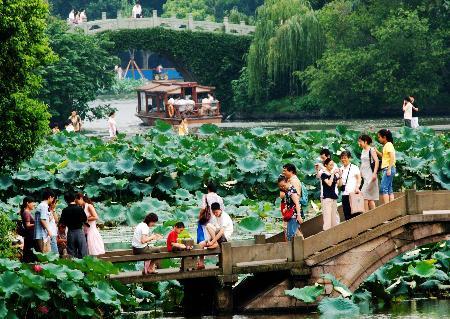 图文:游客来到杭州曲院风荷景区欣赏荷花