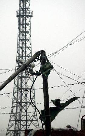 图文:一根电线杆被吹断