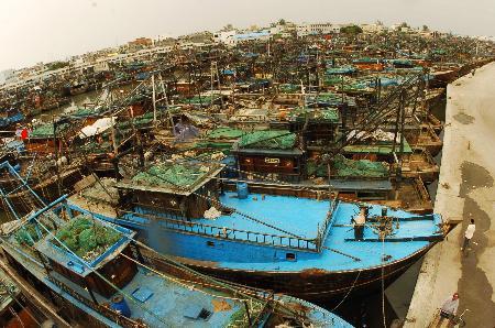 """图文:北海市数千艘渔船回港尾巴""""避风"""