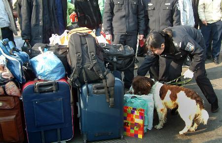 图文:郑州女警带搜索犬检查旅客行李
