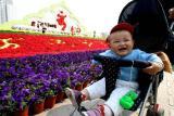 图文:古城苏州花团锦簇
