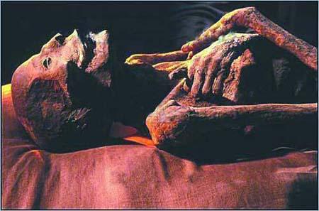 埃及千年法老木乃伊结束世纪 流浪 归故里图片