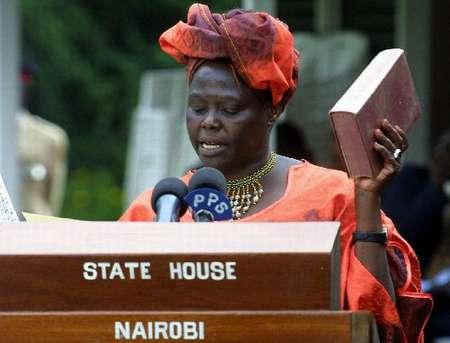 肯尼亚环保主义者马塔伊获得诺贝尔和平奖(图)