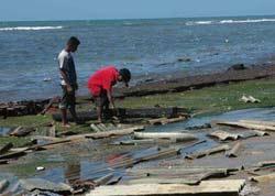 苏门答腊岛经济总量_苏门答腊岛地图