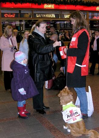 图文:芬兰向十字会等组织捐款近300万欧元