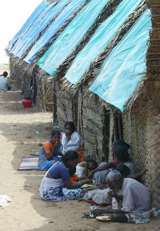 图文:印度灾民居有其屋(2)