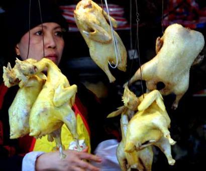 越南一名35岁妇女死于禽流感为两周内第五例