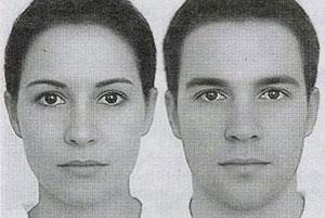人脸; 电脑虚拟制作的世界上最完美的帅哥和美女