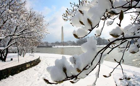 现暴风雪。预报还说,纽约地区平均降雪厚度为30到46厘米,气温最低为零下5摄氏度。   新泽西州数百户家庭供电中断。由于潮湿、下雪天气,交警部门规定了道路最高限速。在新泽西州韦恩城,12日早晨雪已深至脚踝。大雪降临数小时前,纽约居民在超市外排起长龙,储存桶装水和基本生活必需品。   新泽西州纽瓦克自由国际机场、纽约拉瓜迪亚机场和约翰肯尼迪国际机场12日早晨紧急关闭,2000多航班被取消。约翰肯尼迪国际机场官员称,该机场可能会在当天中午才能恢复运营。   达美航空公司宣布,取消12日在暴风雪推移路线上多个