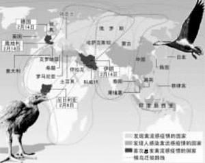 高致病禽流感疫情染指欧洲心脏