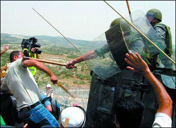 埃及力促以色列重启巴以和谈
