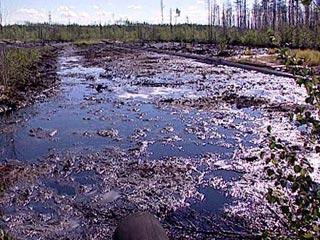 俄罗斯最大输油管道漏油可能引发环境灾难(图)