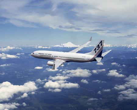飞机的星形�yb�9�._资料图片:波音737系列飞机:b737-800型
