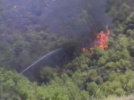图文:塞浦路斯客机坠毁引起森林大火